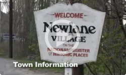 Newfane Special Town Meeting 11/8/12