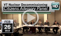 VT Nuclear Decommissioning Citizens Advisory Panel: 2/26/15