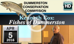 DCC: Kenneth Cox - Fish of Dummerston 4/5/16