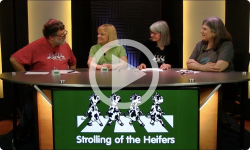 BCTV Open Studio: 2019 Strolling of the Heifers Preview