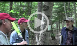 Living and Dying Episode 4: The Manitou Project & Brattleboro Area Hospice