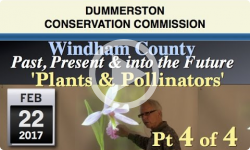 DCC: Windham County- Past, Present & Future Pt 4