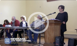 2019 Newfane Town Mtg 3/5/19