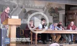 2019 Townshend Town Mtg 3/5/19