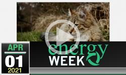Energy Week with George Harvey: Energy Week #412 - 4/1/2021