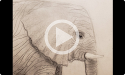 """Drawing with Jason #2, """"The Elephant and The Egret"""""""