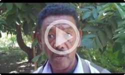 SIT Abroad: HIV & AIDS in Ethiopia