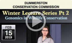 Dummerston Conservation Commission: Winter Lecture Series Pt 2 - Genomics in Wildlife Conservation
