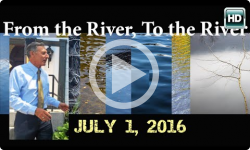 From the River to the River - Press Conference 7/1/16