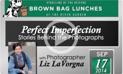 River Garden Brown Bag Lunch Series: Perfect Imperfection – Photography Stories 9/17/14
