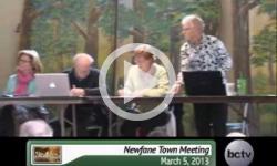 2013 Newfane Town Mtg. 3/6/13