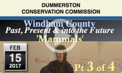 DCC: Windham County- Past, Present & Future Pt 3