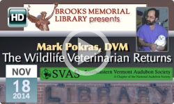 The Wildlife Vet Returns - Mark Pokras, DVM